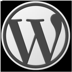 וורדפרס 3.1