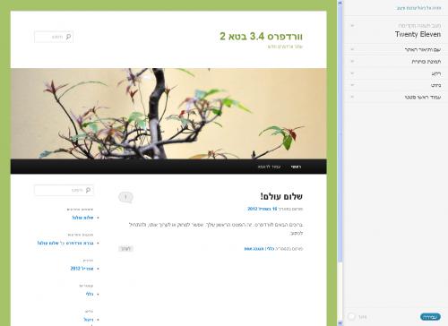 עיצוב אתר מתוך ממשק הניהול בעזרת ה- Theme Customizer