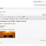 עורך ויזואלי בוידג'ט טקסט