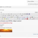 עורך ויזואלי מתקדם בוידג'ט טקסט